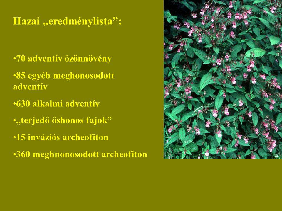 """Hazai """"eredménylista : 70 adventív özönnövény 85 egyéb meghonosodott adventív 630 alkalmi adventív """"terjedő őshonos fajok 15 inváziós archeofiton 360 meghnonosodott archeofiton"""