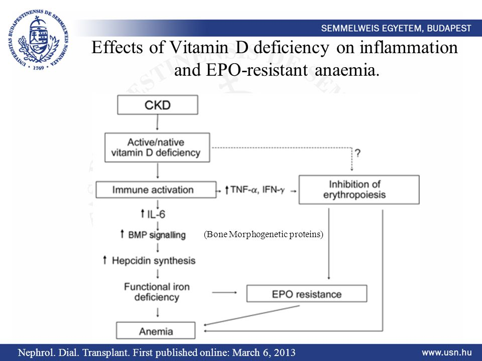 Effects of Vitamin D deficiency on inflammation and EPO-resistant anaemia. Nephrol. Dial. Transplant. First published online: March 6, 2013 (Bone Morp