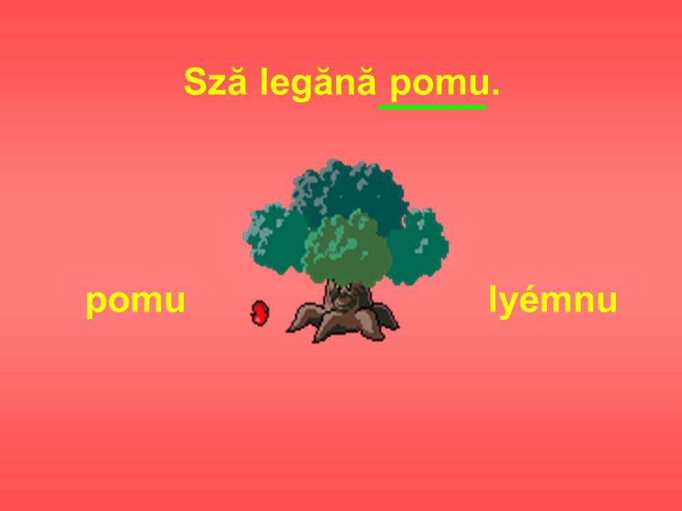 Sză legănă pomu. pomulyémnu