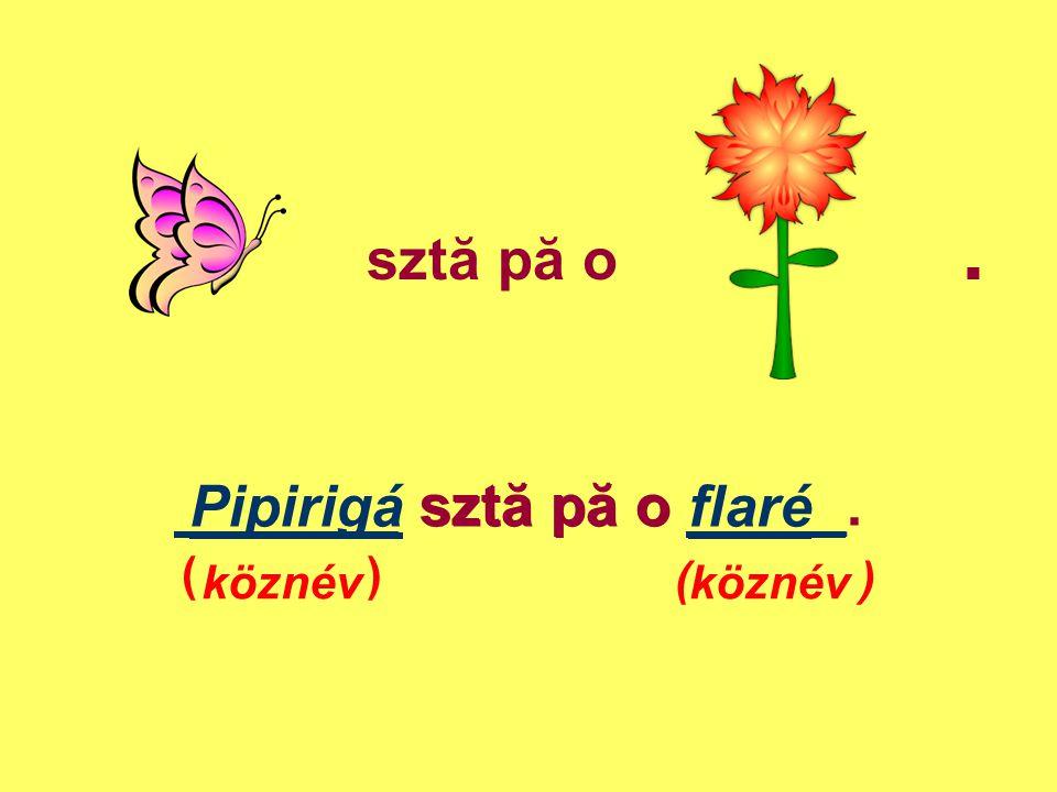 sztă pă o. _______ sztă pă o _____. ( ) Pipirigá sztă pă o flaré köznév