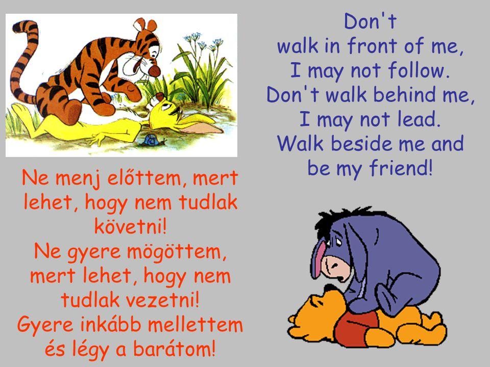 Ne menj előttem, mert lehet, hogy nem tudlak követni! Ne gyere mögöttem, mert lehet, hogy nem tudlak vezetni! Gyere inkább mellettem és légy a barátom