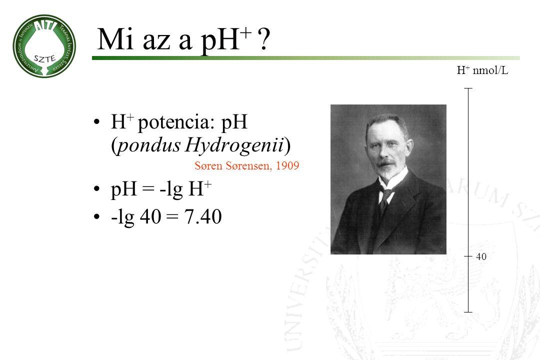H + potencia: pH (pondus Hydrogenii) Søren Sørensen, 1909 pH = -lg H + -lg 40 = 7.40 A H + potenciája Molnár '99 H + nmol/L 40 100 16