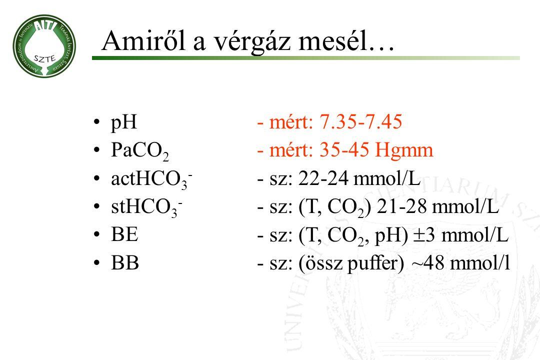 Magas AG acidózis a.Laktát acidózis: sokk, szepszis, májelégtelenség, stb b.Ketoacidózis c.Savbevitel: szalicilát mérgezés Normális AG acidózis a.Intesztinális HCO 3 - vesztés: hasmenés, fisztula, stb.