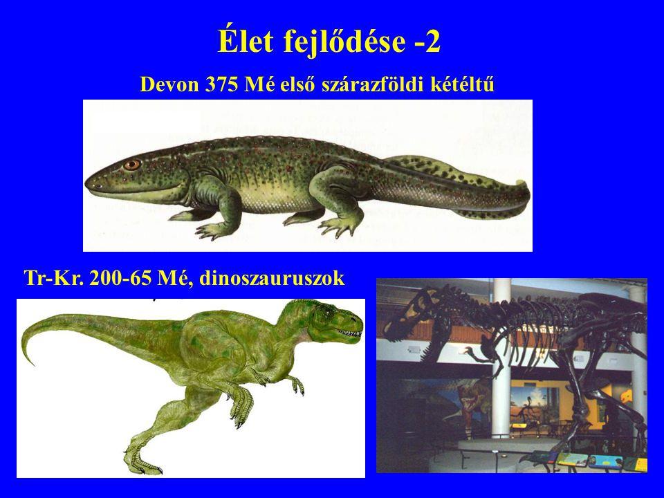 Élet fejlődése -2 Tr-Kr. 200-65 Mé, dinoszauruszok Devon 375 Mé első szárazföldi kétéltű