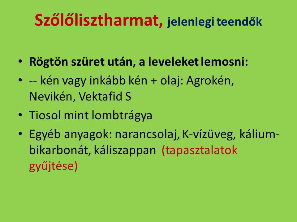 Szőlőlisztharmat, jelenlegi teendők Rögtön szüret után, a leveleket lemosni: -- kén vagy inkább kén + olaj: Agrokén, Nevikén, Vektafid S Tiosol mint l