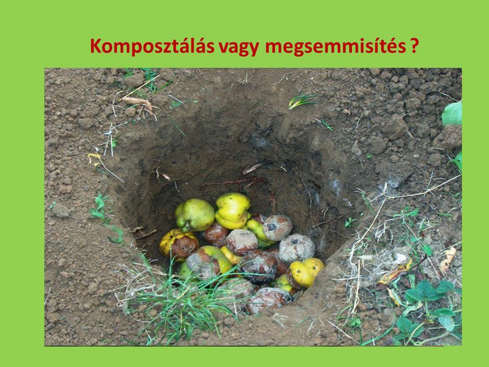 Komposztálás vagy megsemmisítés ?