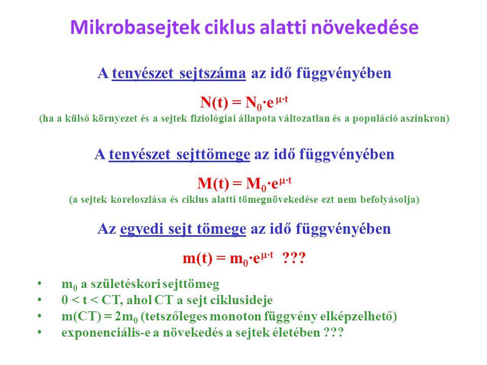 Mikrobasejtek ciklus alatti növekedése A tenyészet sejtszáma az idő függvényében N(t) = N 0 ·e  ·t (ha a külső környezet és a sejtek fiziológiai állapota változatlan és a populáció aszinkron) A tenyészet sejttömege az idő függvényében M(t) = M 0 ·e  ·t (a sejtek koreloszlása és ciklus alatti tömegnövekedése ezt nem befolyásolja) Az egyedi sejt tömege az idő függvényében m(t) = m 0 ·e  ·t ??.
