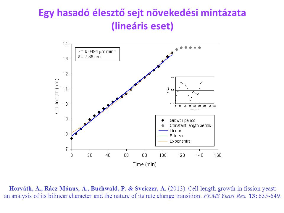 γ = 0.0494 μ m min -1 δ = 7.86 μ m Horváth, A., Rácz-Mónus, A., Buchwald, P. & Sveiczer, A. (2013). Cell length growth in fission yeast: an analysis o