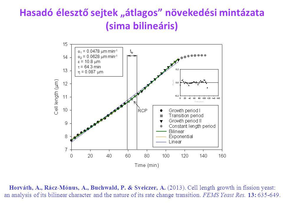 α 1 = 0.0478 μ m min -1 α 2 = 0.0628 μ m min -1 ε = 10.8 μ m τ = 64.3 min η = 0.087 μ m RCP Horváth, A., Rácz-Mónus, A., Buchwald, P. & Sveiczer, A. (