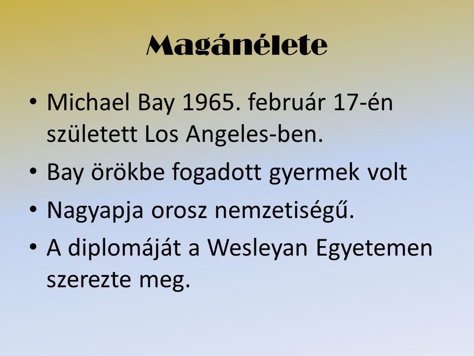 Magánélete Michael Bay 1965. február 17-én született Los Angeles-ben. Bay örökbe fogadott gyermek volt Nagyapja orosz nemzetiségű. A diplomáját a Wesl