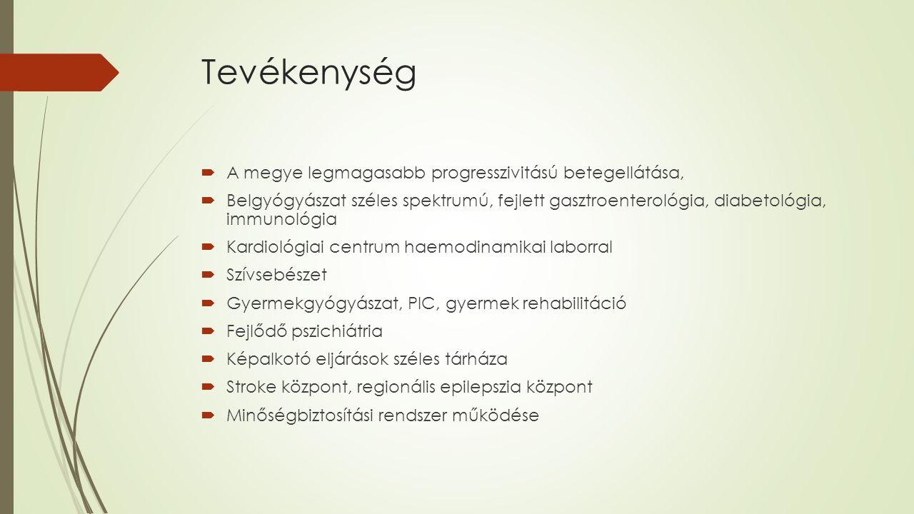 Tevékenység  A megye legmagasabb progresszivitású betegellátása,  Belgyógyászat széles spektrumú, fejlett gasztroenterológia, diabetológia, immunológia  Kardiológiai centrum haemodinamikai laborral  Szívsebészet  Gyermekgyógyászat, PIC, gyermek rehabilitáció  Fejlődő pszichiátria  Képalkotó eljárások széles tárháza  Stroke központ, regionális epilepszia központ  Minőségbiztosítási rendszer működése