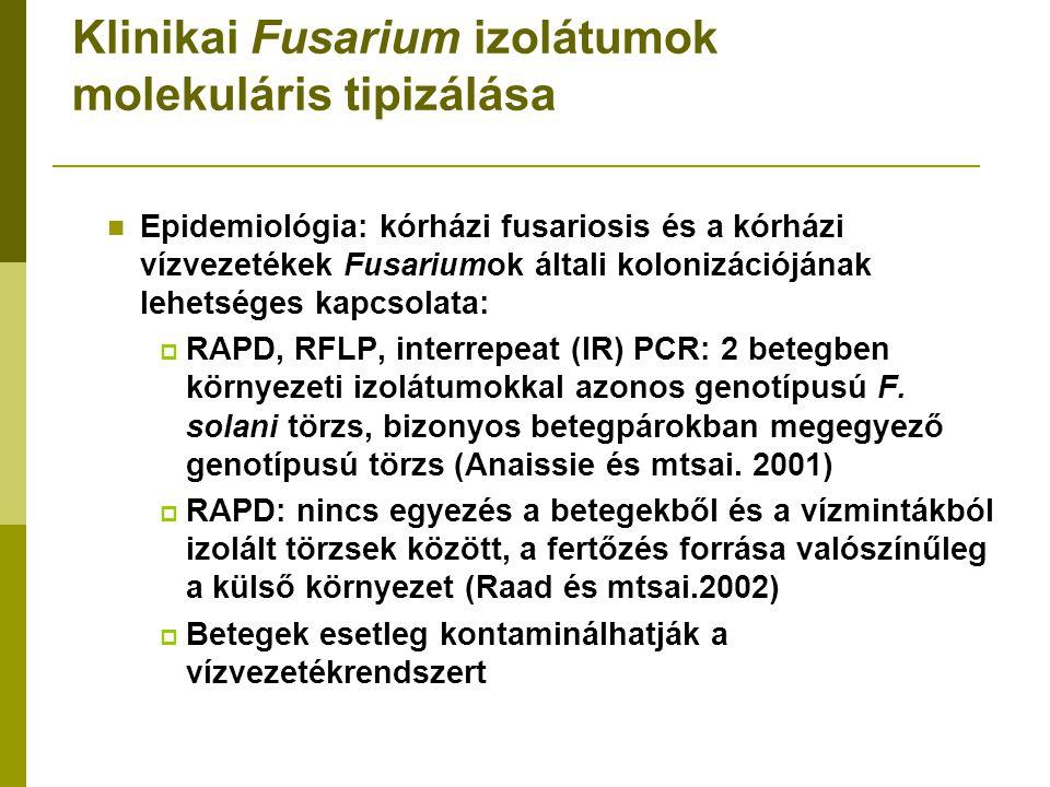 Klinikai Fusarium izolátumok molekuláris tipizálása Epidemiológia: kórházi fusariosis és a kórházi vízvezetékek Fusariumok általi kolonizációjának lehetséges kapcsolata:  RAPD, RFLP, interrepeat (IR) PCR: 2 betegben környezeti izolátumokkal azonos genotípusú F.