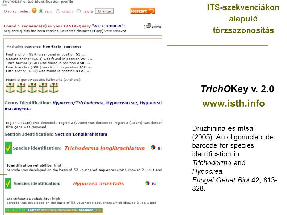 ITS-szekvenciákon alapuló törzsazonosítás TrichOKey v.