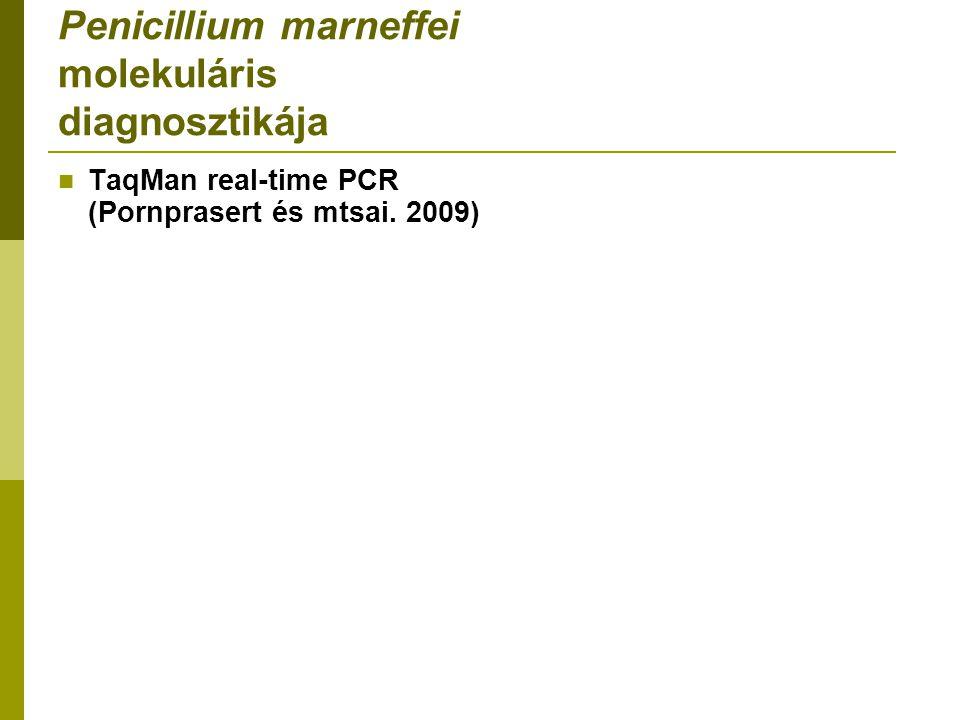 Penicillium marneffei molekuláris diagnosztikája TaqMan real-time PCR (Pornprasert és mtsai. 2009)