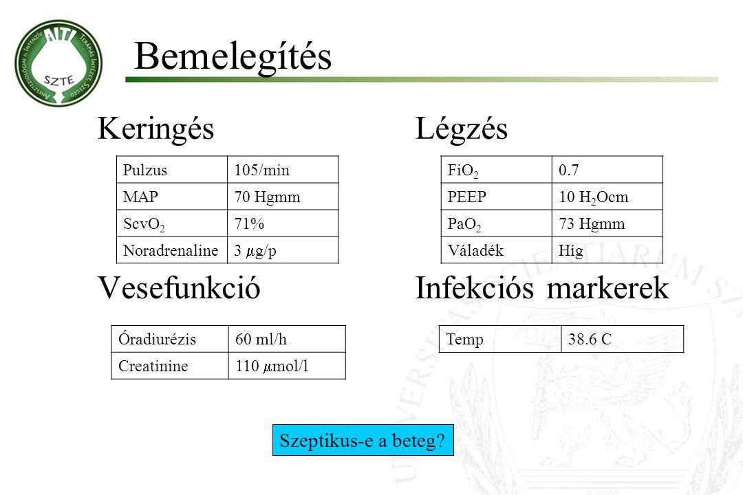 KeringésLégzés VesefunkcióInfekciós markerek Pulzus105/min MAP70 Hgmm ScvO 2 71% Noradrenaline 3  g/p FiO 2 0.7 PEEP10 H 2 Ocm PaO 2 73 Hgmm VáladékHíg Óradiurézis60 ml/h Creatinine 110  mol/l Temp38.6 C Szeptikus-e a beteg.