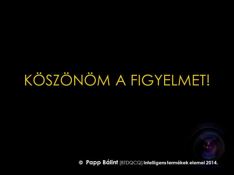 KÖSZÖNÖM A FIGYELMET! © Papp Bálint [BTDQCQ] Intelligens termékek elemei 2014.