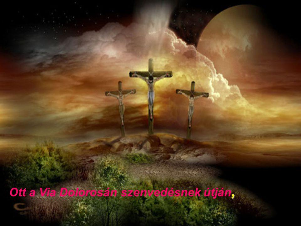 A világ összes bűne nyomta vállát a kereszt súlya alatt,