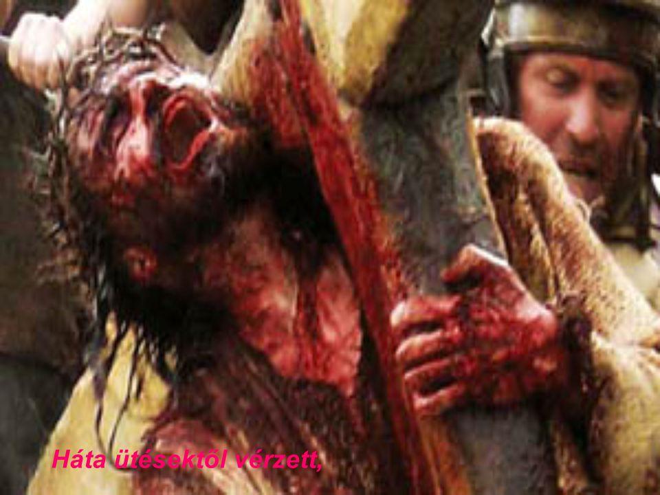 Háta ütésektől vérzett,