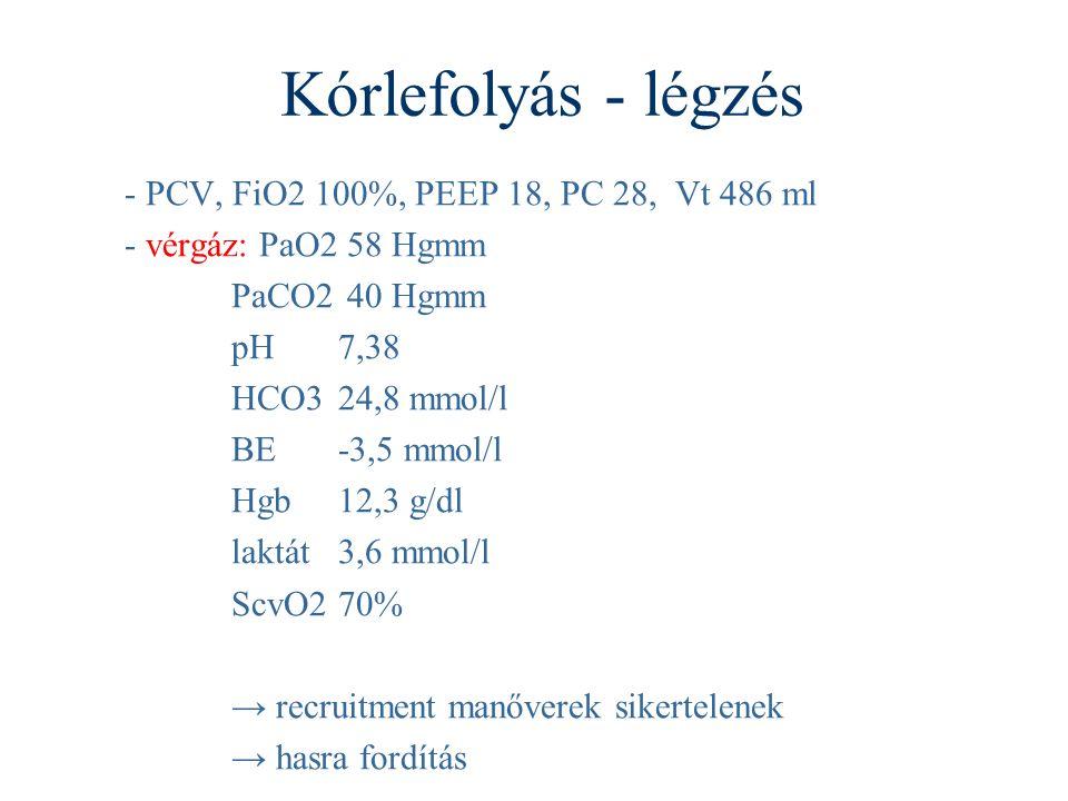 Kórlefolyás - légzés - PCV, FiO2 100%, PEEP 18, PC 28, Vt 486 ml - vérgáz: PaO2 58 Hgmm PaCO2 40 Hgmm pH7,38 HCO324,8 mmol/l BE-3,5 mmol/l Hgb12,3 g/dl laktát3,6 mmol/l ScvO270% → recruitment manőverek sikertelenek → hasra fordítás