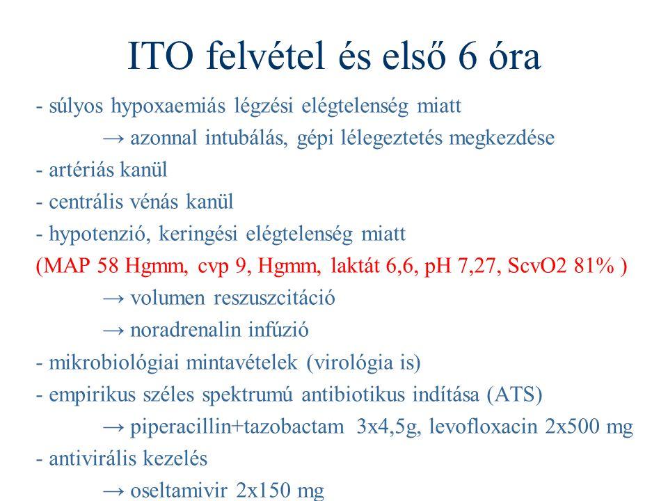 ITO felvétel és első 6 óra - súlyos hypoxaemiás légzési elégtelenség miatt → azonnal intubálás, gépi lélegeztetés megkezdése - artériás kanül - centrális vénás kanül - hypotenzió, keringési elégtelenség miatt (MAP 58 Hgmm, cvp 9, Hgmm, laktát 6,6, pH 7,27, ScvO2 81% ) → volumen reszuszcitáció → noradrenalin infúzió - mikrobiológiai mintavételek (virológia is) - empirikus széles spektrumú antibiotikus indítása (ATS) → piperacillin+tazobactam 3x4,5g, levofloxacin 2x500 mg - antivirális kezelés → oseltamivir 2x150 mg