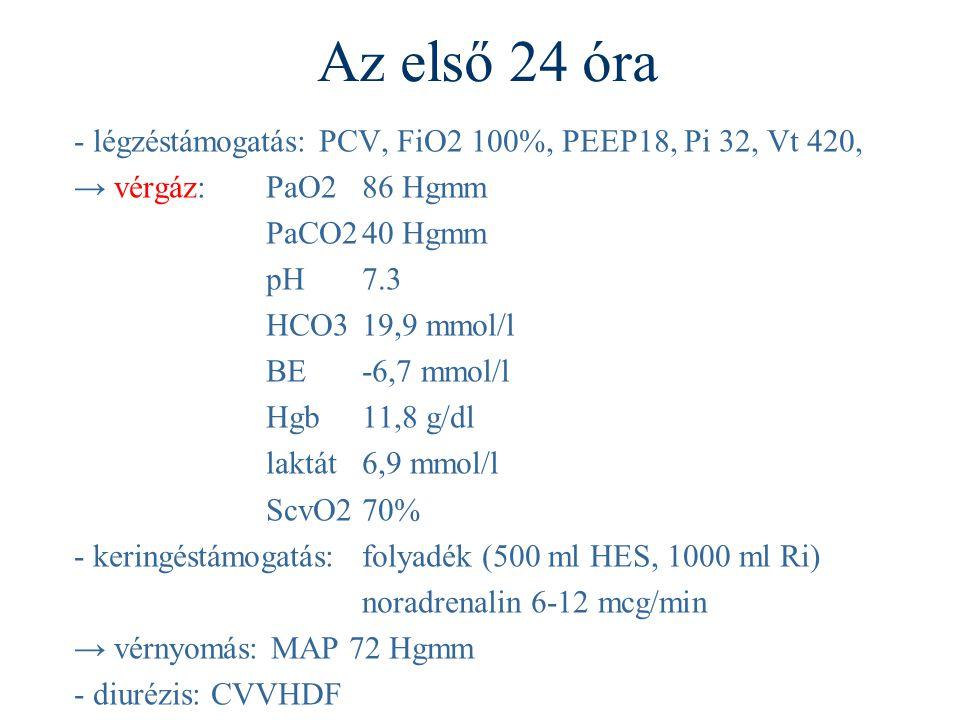 Az első 24 óra - légzéstámogatás: PCV, FiO2 100%, PEEP18, Pi 32, Vt 420, → vérgáz:PaO286 Hgmm PaCO240 Hgmm pH7.3 HCO319,9 mmol/l BE-6,7 mmol/l Hgb 11,8 g/dl laktát6,9 mmol/l ScvO270% - keringéstámogatás:folyadék (500 ml HES, 1000 ml Ri) noradrenalin 6-12 mcg/min → vérnyomás: MAP 72 Hgmm - diurézis: CVVHDF
