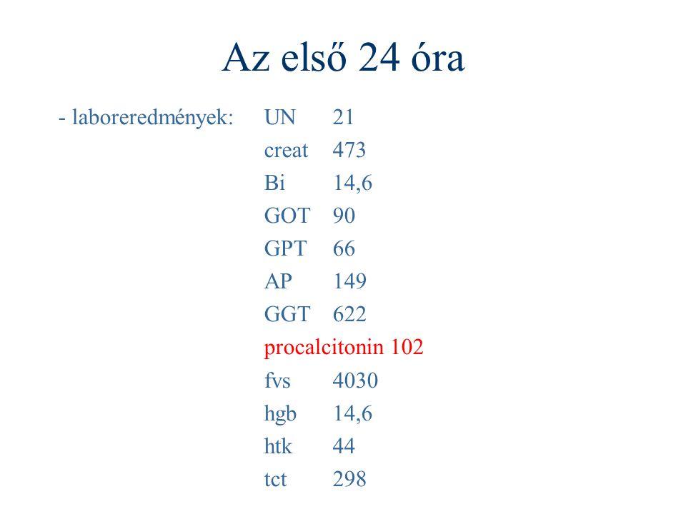 Az első 24 óra - laboreredmények:UN21 creat473 Bi14,6 GOT90 GPT66 AP149 GGT622 procalcitonin 102 fvs4030 hgb14,6 htk44 tct298