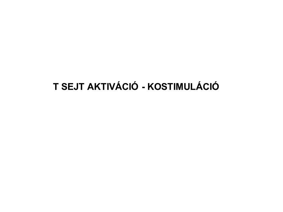 T SEJT AKTIVÁCIÓ - KOSTIMULÁCIÓ