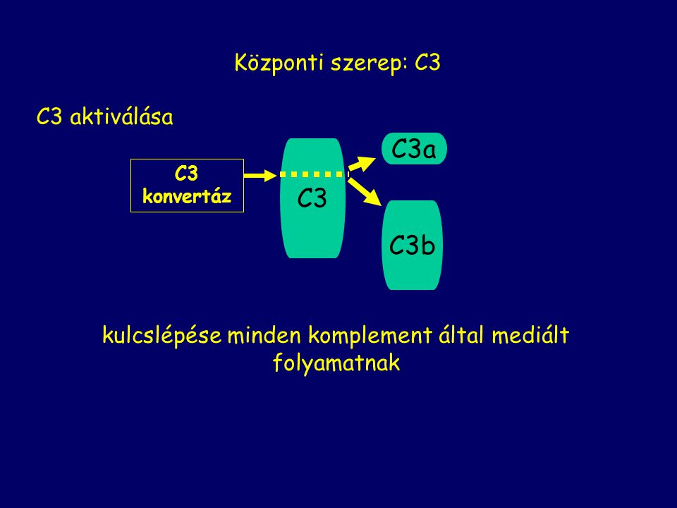 Szolubilis plazmafehérjék inhibitorok receptorok