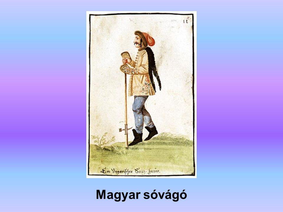 Magyar szolga