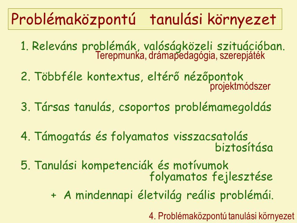 Problémaközpontú tanulási környezet 4. Problémaközpontú tanulási környezet 1.