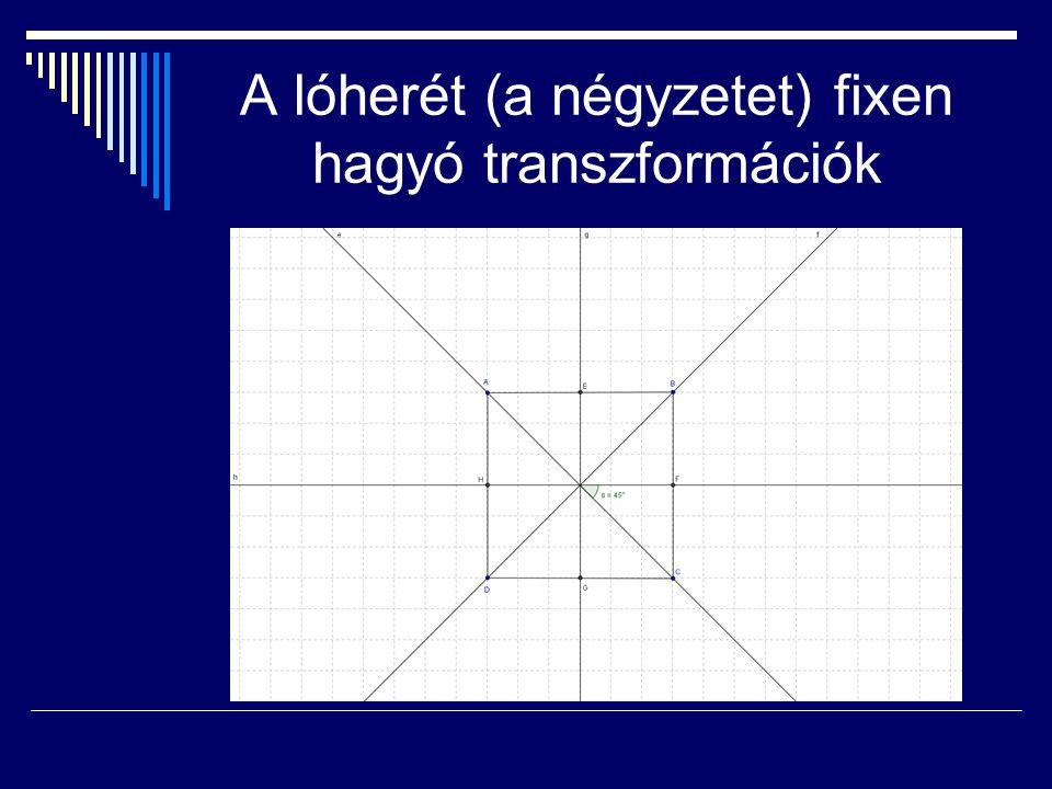 A lóherét (a négyzetet) fixen hagyó transzformációk