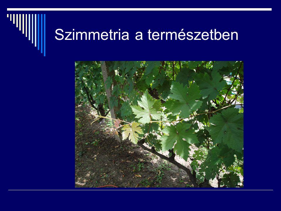 Irodalom 10) Bácsó,S.;Hoffmann, M.: Fejezetek a geometriából, EKF Líceum Kiadó, 2003.