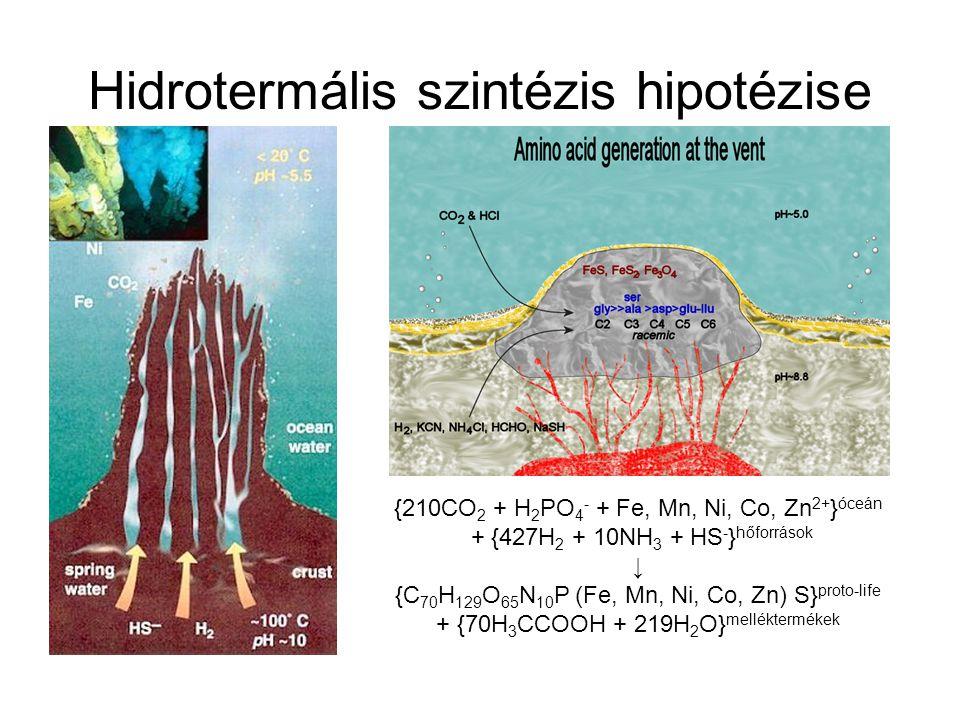 Hidrotermális szintézis hipotézise {210CO 2 + H 2 PO 4 - + Fe, Mn, Ni, Co, Zn 2+ } óceán + {427H 2 + 10NH 3 + HS - } hőforrások ↓ {C 70 H 129 O 65 N 1