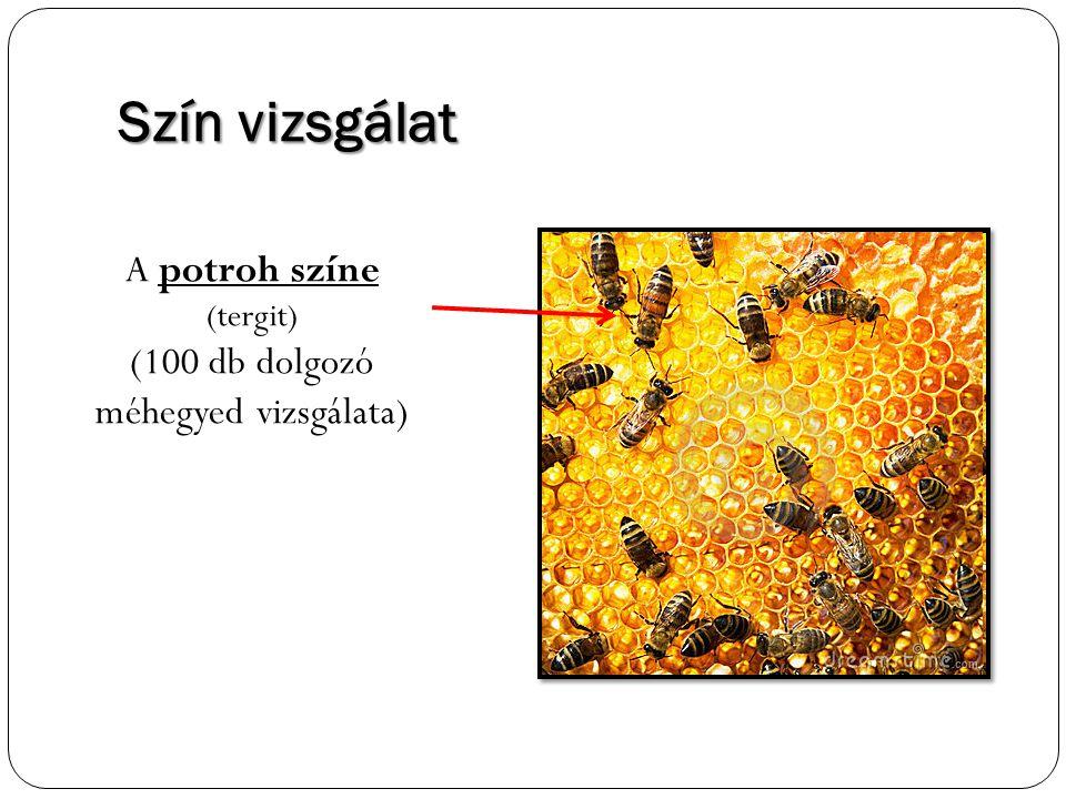 Szín vizsgálat A potroh színe (tergit) (100 db dolgozó méhegyed vizsgálata)