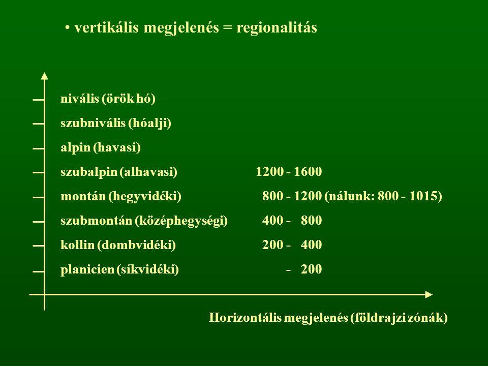 vertikális megjelenés = regionalitás nivális (örök hó) szubnivális (hóalji) alpin (havasi) szubalpin (alhavasi)1200 - 1600 montán (hegyvidéki) 800 - 1200 (nálunk: 800 - 1015) szubmontán (középhegységi) 400 - 800 kollin (dombvidéki) 200 - 400 planicien (síkvidéki) - 200 Horizontális megjelenés (földrajzi zónák)