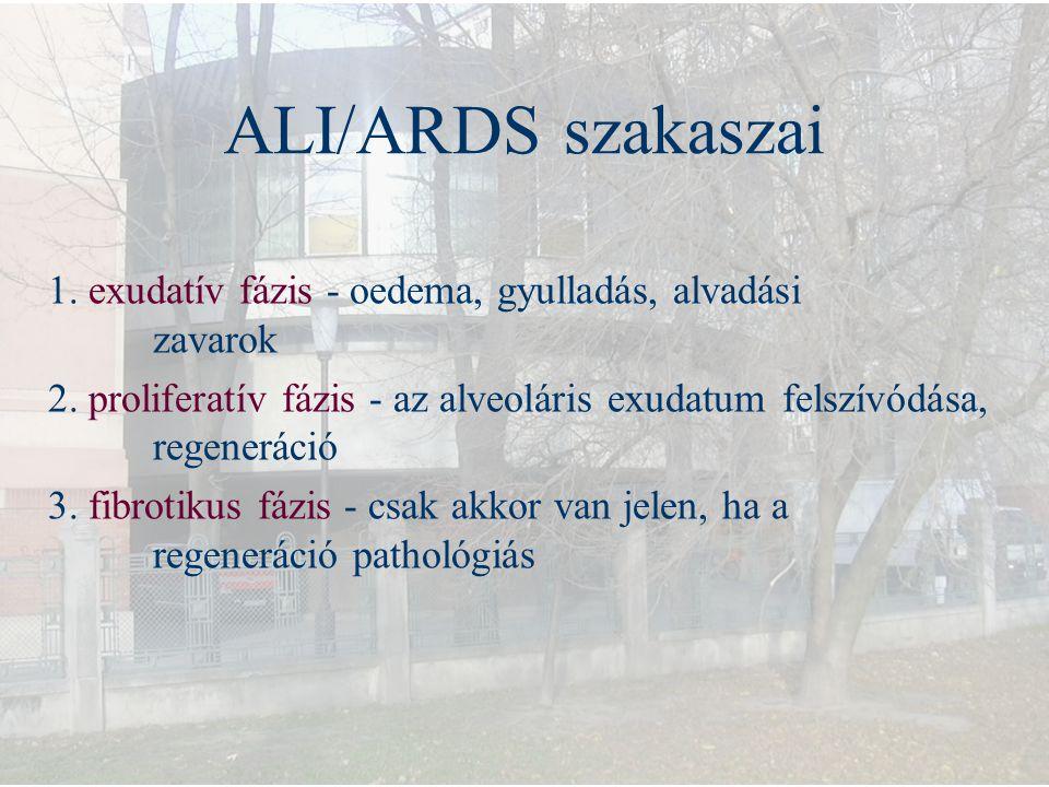 ALI/ARDS szakaszai 1. exudatív fázis - oedema, gyulladás, alvadási zavarok 2. proliferatív fázis - az alveoláris exudatum felszívódása, regeneráció 3.