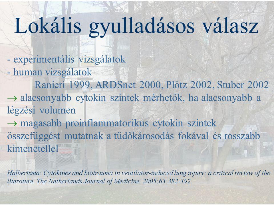 Lokális gyulladásos válasz - experimentális vizsgálatok - human vizsgálatok Ranieri 1999, ARDSnet 2000, Plötz 2002, Stuber 2002  alacsonyabb cytokin
