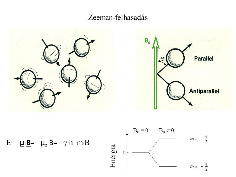 Zeeman-felhasadás Energia B 0 = 0 B 0  0 E=  μ  B=  μ z  B=  γ  ħ  m  B