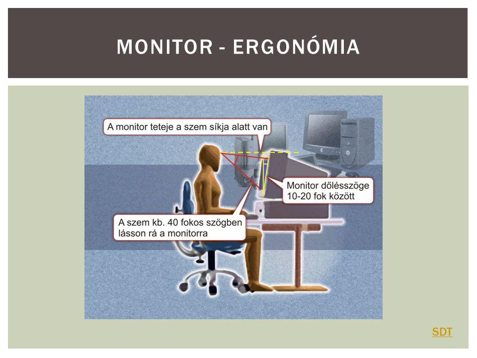MONITOR - ERGONÓMIA SDT
