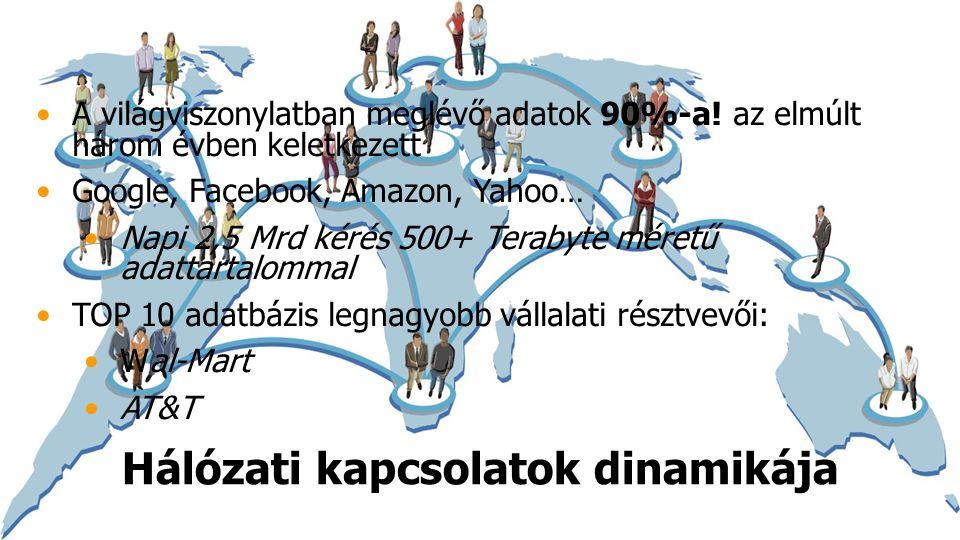 Hálózati kapcsolatok dinamikája A világviszonylatban meglévő adatok 90%-a.