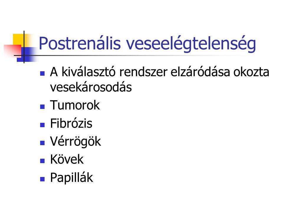 Postrenális veseelégtelenség A kiválasztó rendszer elzáródása okozta vesekárosodás Tumorok Fibrózis Vérrögök Kövek Papillák