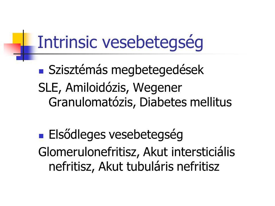 Intrinsic vesebetegség Szisztémás megbetegedések SLE, Amiloidózis, Wegener Granulomatózis, Diabetes mellitus Elsődleges vesebetegség Glomerulonefritis