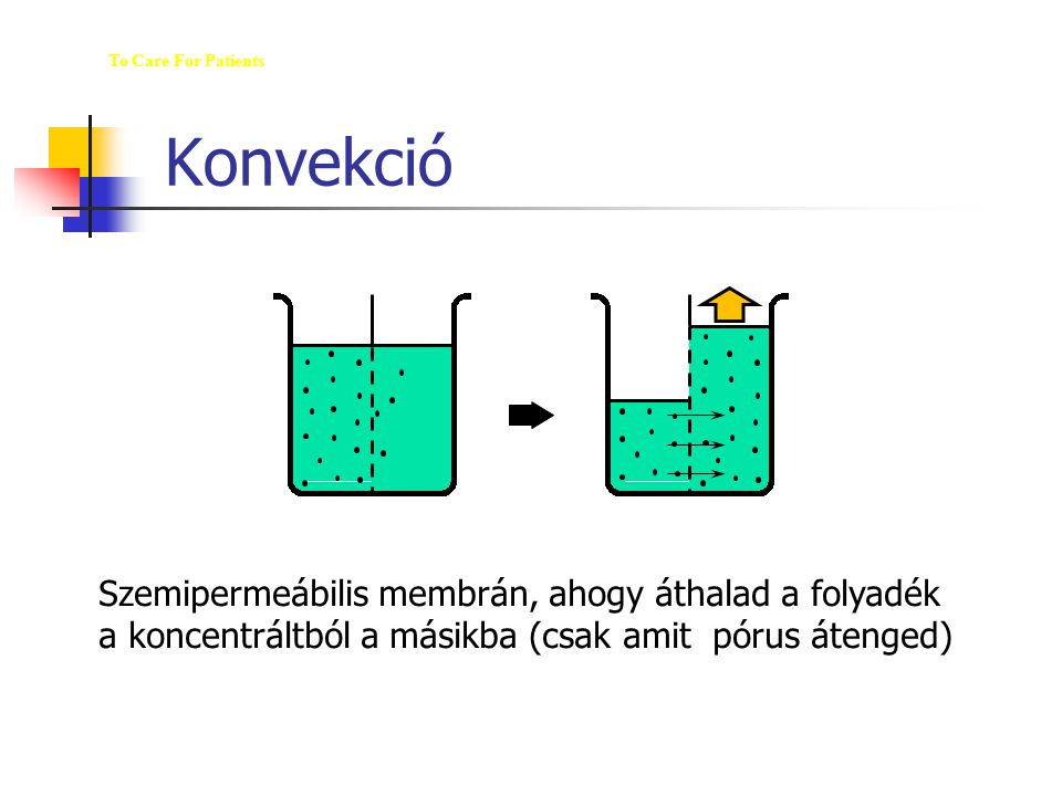 """Konvekció The M ED  U  WAY To Care For Patients Convection: The movement of solutes with a water-flow, """"solvent drag"""", e.g., the movement of membran"""