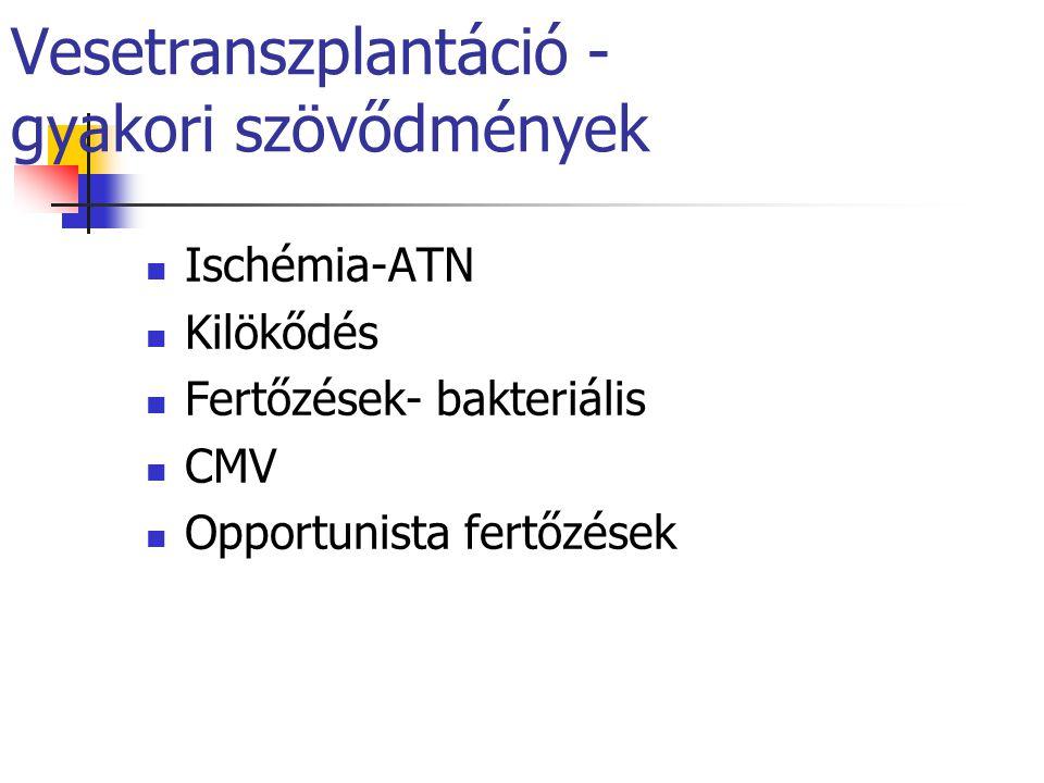 Vesetranszplantáció - gyakori szövődmények Ischémia-ATN Kilökődés Fertőzések- bakteriális CMV Opportunista fertőzések