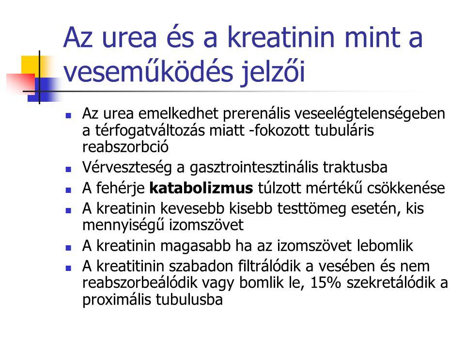 Az urea és a kreatinin mint a veseműködés jelzői Az urea emelkedhet prerenális veseelégtelenségeben a térfogatváltozás miatt -fokozott tubuláris reabs