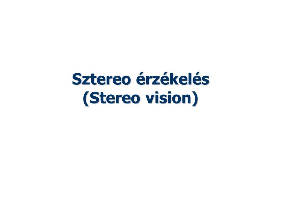 Sztereo érzékelés (Stereo vision) Vajta: Képfeldolgozás és megjelenítés 2014 tavasz