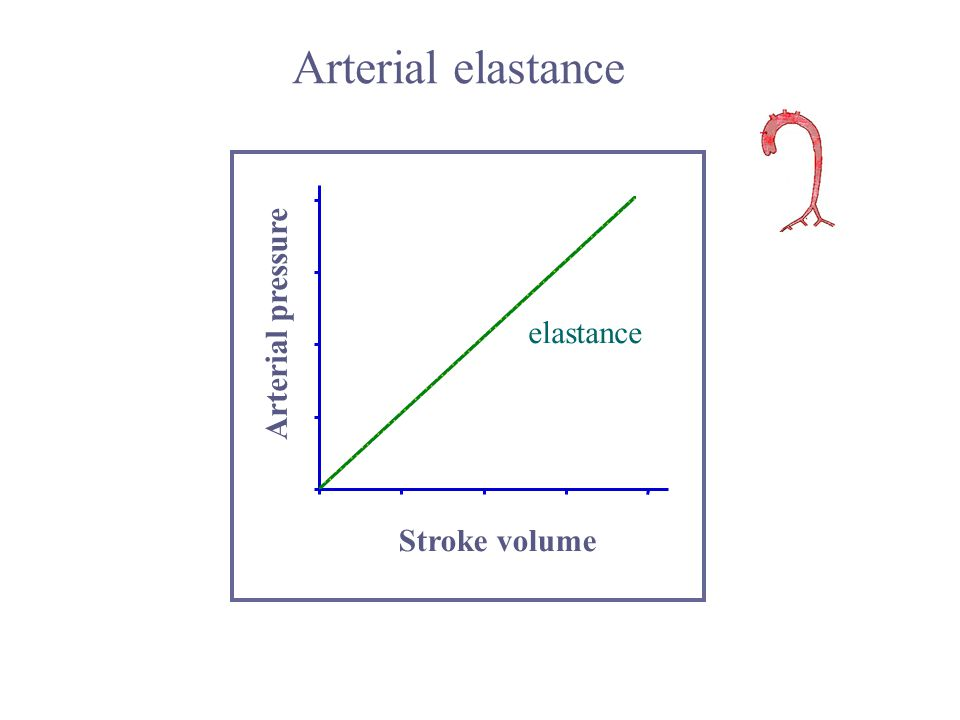 Arterial elastance Stroke volume Arterial pressure elastance