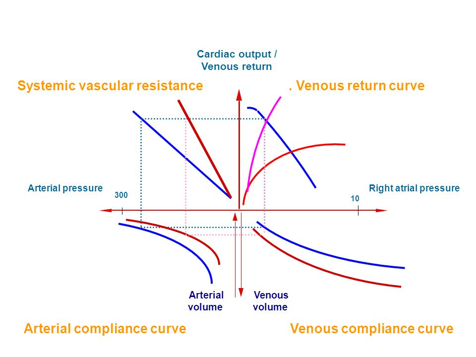 Cardiac output / Venous return Right atrial pressureArterial pressure Arterial volume Venous volume Systemic vascular resistance 300 artériás Arterial