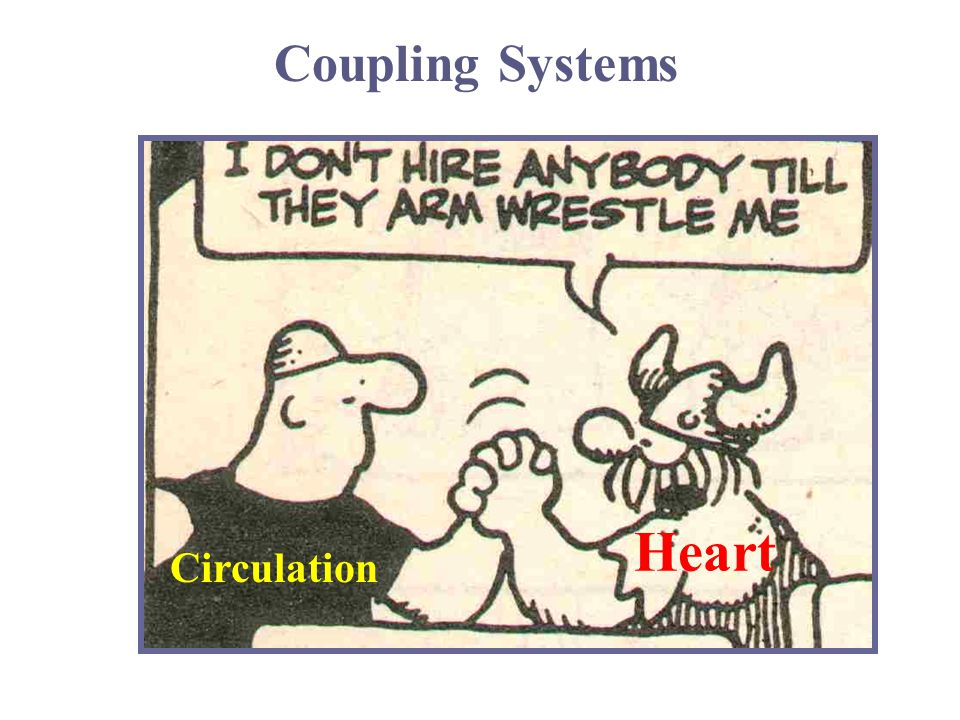 Heart Circulation Coupling Systems