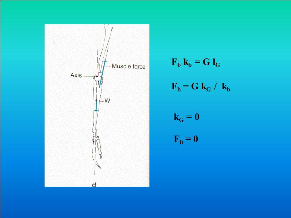 F b k b = G k w F b = G k G / k b F b / G= K G / k b 2005.04.27